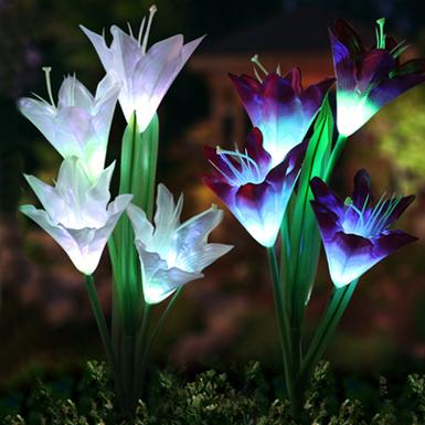http://img.brightzeal.com/images/upload/64.jpg